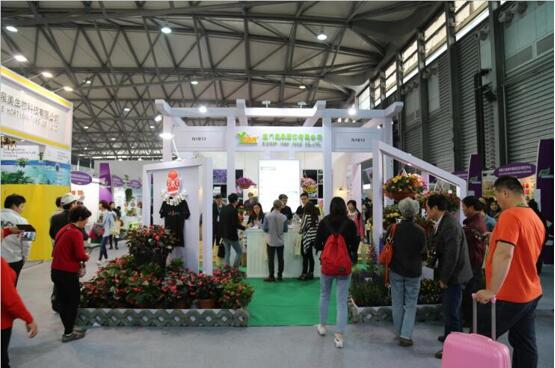 德赢 ac米兰园艺参加2015年4月第十七届中国(上海)国际德赢ac 米兰园艺展览会展位现场